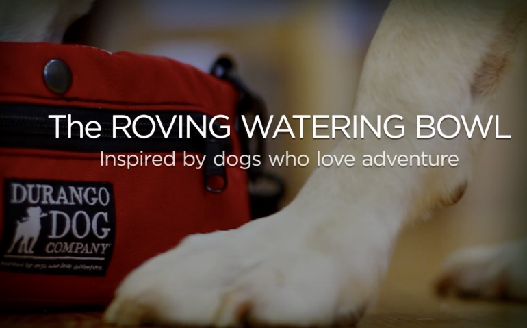 The Roving Watering Bowl Inspired by Dogs Who Love Adventure
